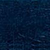 Dark Blue Vinyl