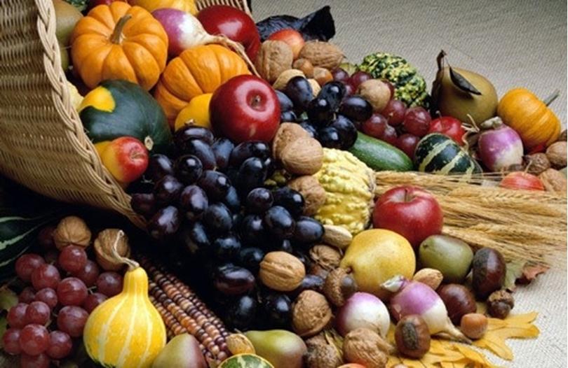 Autumn's Festival of Foods