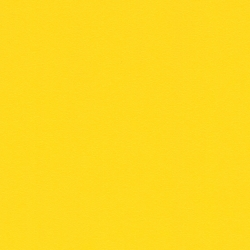 Morning Yellow HPL (MYL) [+$48.00]