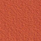Tangerine (FU71)*