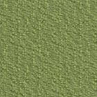 Moss (FU73)*